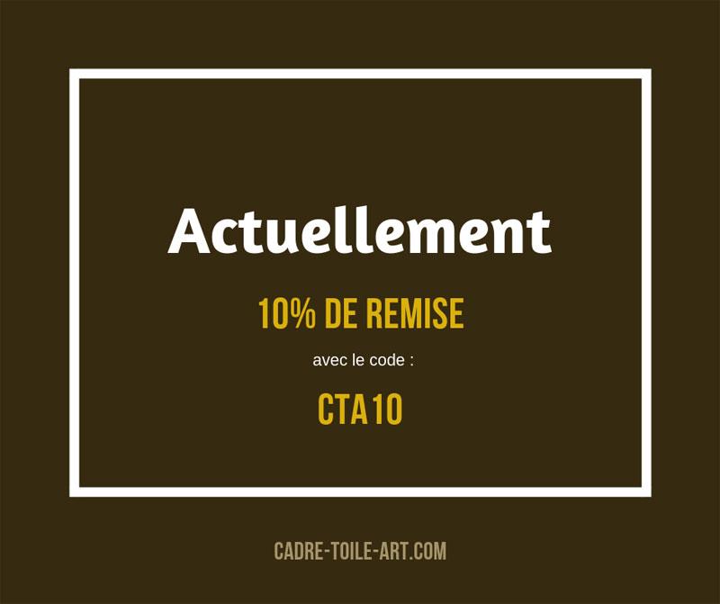 10% de remise avec le code CTA10